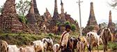 Santuario Indein, Myanmar